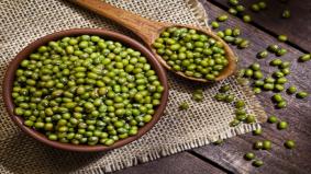 8 khasiat kacang hijau yang anda wajib tahu