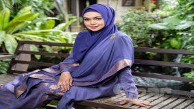 Siti Nurhaliza dapat lampu hijau