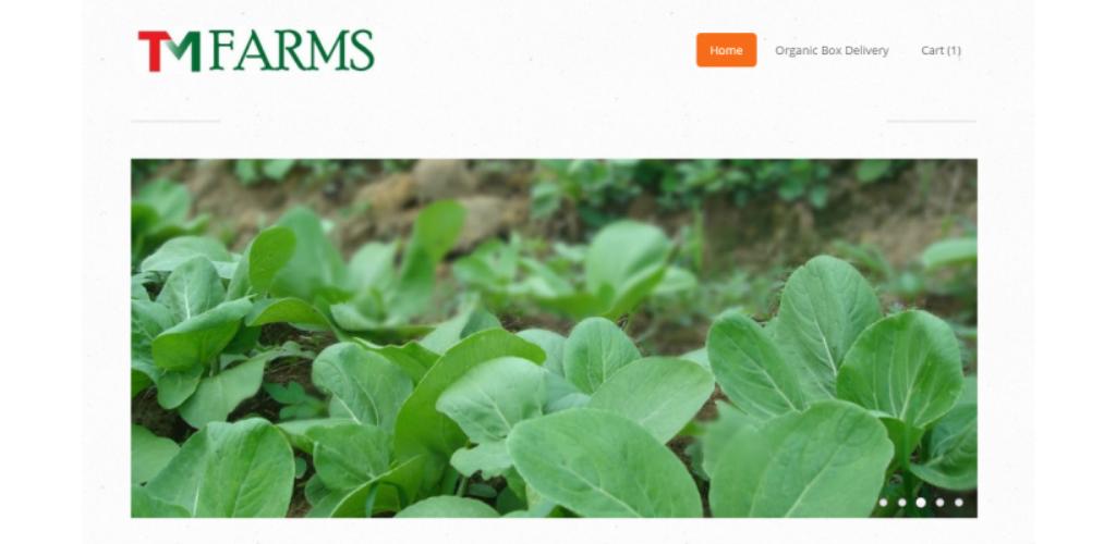 TM FARMS