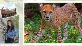 Covid-19: Sharifah Sakinah prihatin nasib haiwan di Zoo Negara