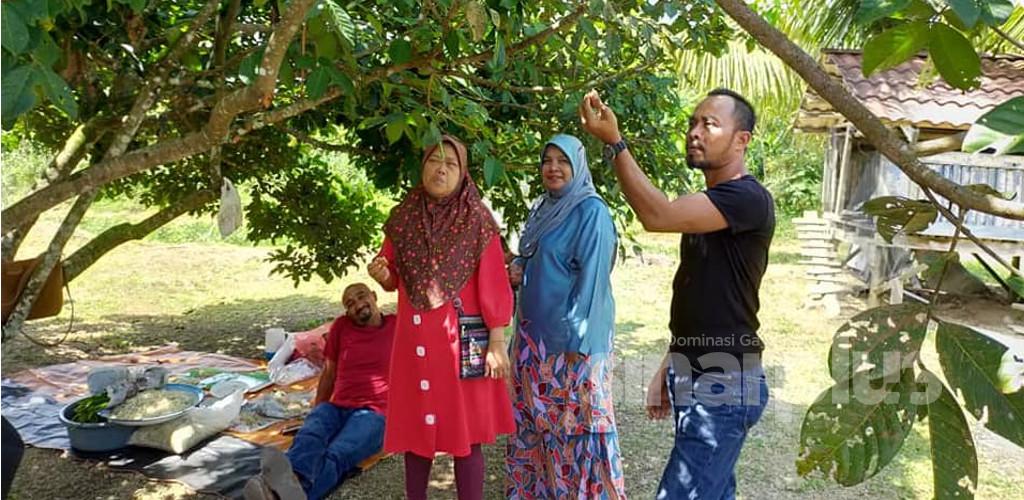 Sempoi majlis kenduri kahwin dalam kebun, tetamu makan durian