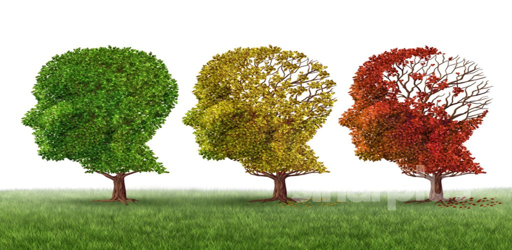 Orang muda jangan pandang remeh penyakit Alzheimer, penting ambil peduli kalau tak nak nyanyuk
