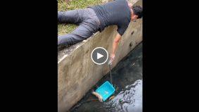 [VIDEO]Bekas pramugara selamatkan anak anjing daripada hanyut