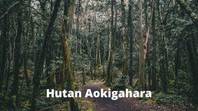 Hutan Aokigahara jadi lokasi masyarakat Jepun bunuh diri