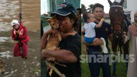 [VIDEO] Selamatkan kucing, bukan 'kakak bomba' tapi abang