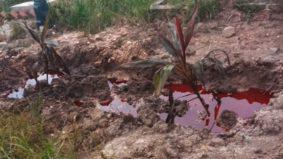 Misteri kubur berdarah akhirnya terjawab… rupa-rupanya