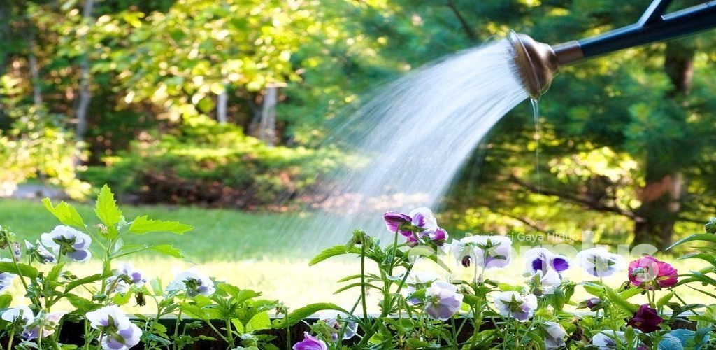 Masalah gangguan air, tak guna merungut, amalkan langkah berhemat ini jauh lebih baik