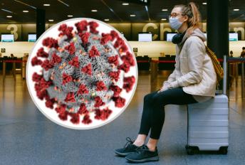 haiwan pembawa virus