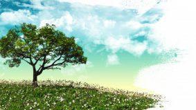 Pahala bagi orang yang menanam pokok sewaktu di dunia
