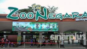 Kempen 'santai di Zoo', diskaun 40 peratus menanti pengunjung, boleh beli di Shopee