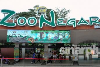 Kempen 'santai di Zoo', diskaun 30 peratus menanti pengunjung, boleh beli di Shopee