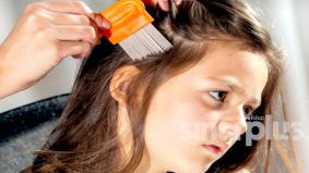 Si kecil dijangkiti kutu rambut, ini tip mudah yang boleh diambil