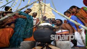 Cara masyarakat India sambut perayaan Ponggal, PM sempat ucap selamat