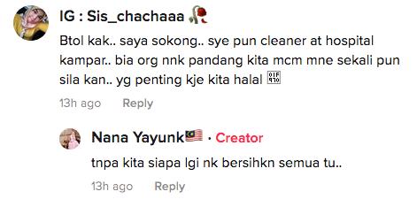 cleaner model