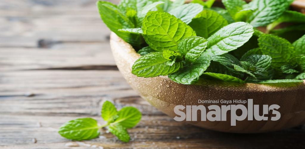 Lelangit terbakar akibat makanan panas, ini 5 tip mudah untuk merawat