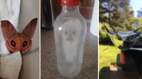Nampak bentuk wajah pada objek, gangguan mental atau mistik?