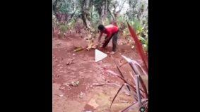 [VIDEO] Gara-gara rindu, lelaki gali semula kubur arwah isteri