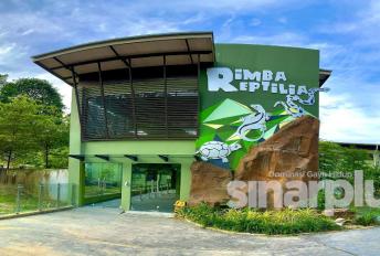 Pembukaan semula Zoo Negara Jumaat ini, diskaun 20 peratus menanti pengunjung!