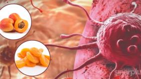 Buah aprikot boleh halang kanser daripada merebak. Kajian universiti terkemuka buktikan kesahihannya