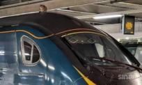 Kereta api terkandas lebih 2 jam gara-gara si bulus syok 'berehat' atas bumbung