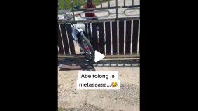 [VIDEO] Budak lelaki tunggang motor, rempuh pagar. Rayu bantuan tuan rumah