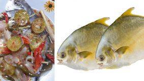 Patut cuba! ikan bawal emas, dimasak stim halia