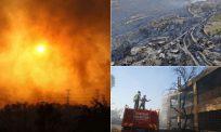 Tiga maut, ribuan haiwan ternakan mati kesan kebakaran hutan di Turki