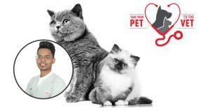 Bawa si bulus jumpa doktor, kucing pun kena vaksin juga. Ikuti saranan kempen Take Your Pet to The Vet cegah penyakit lebih awal