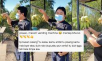 [VIDEO] Jual pisang 'ala vending machine' di Sabah, ramai warganet kagum tabung jualan tak lesap dicuri orang