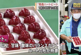 Buah ceri bentuk hati dijual RM1,195 sebiji, rasa masam manis