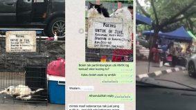 Pak cik jual kucing RM800 tepi jalan dikecam, Animal Malaysia gesa tindakan pihak berkuasa