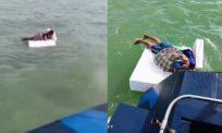 [VIDEO] Beri alasan nak ke Mekah, lelaki kantoi kali kedua berenang rentas daerah naik kepingan gabus