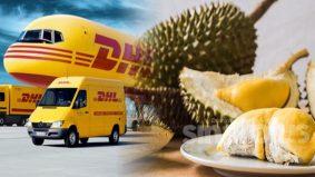 """""""Durian Express"""" bakal diterbangkan ke Hong Kong dan Singapura disebabkan permintaan melonjak"""