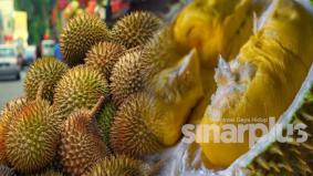 Harga durian PKP mahal terok! Betul ke?