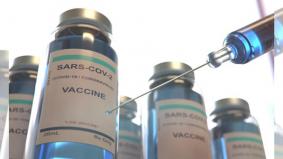Covid-19: Petunjuk pertama perkembangan vaksin