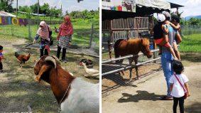 'Pavilion Petting Zoo' tarikan terbaru buat pencinta haiwan di Ipoh