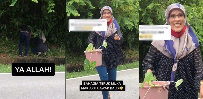 [VIDEO]'Bahagia teruk'- Gadis kongsi wajah ibu ambil pokok keladi tepi jalan curi perhatian