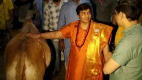 Sanggup minum air kencing lembu sebagai ubat Covid-19, tindakan ahli politik India ini buat ramai geleng kepala