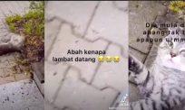 [VIDEO] Kasihan Abang kena 'belasah' dengan kawan gara-gara Abah lambat back up...